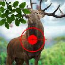 猎人的野生鹿手游安卓版