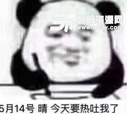 熊猫头日记微信表情包