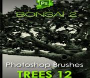 photoshop高清夜色树木笔刷