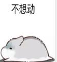 仓鼠不想动表情包