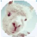 小绵羊腾讯视频VIP账号获取器免费版