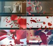 飞舞的玫瑰花瓣婚礼开场视频AE模板
