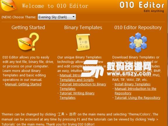SweetScape 010 Editor注册版
