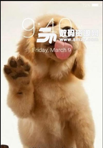 抖音小狗舔屏手机动态壁纸app截图