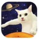 伸长吧猫咪apk手机版