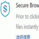 Secure Browsing免费版