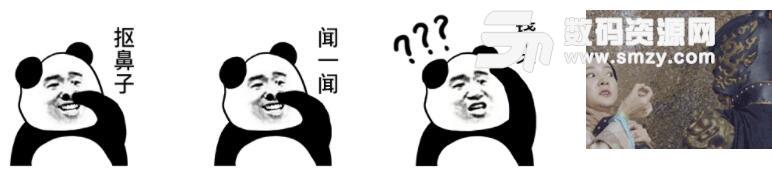 猥琐熊猫人挠头动态表情包高清版(猥琐的熊猫人挠自己动作表情) 无图片