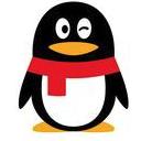 飞迅QQ密码查看器2018(永久免费QQ密码查看工具) v1.0 最新版