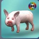 小猪模拟器最新安卓版