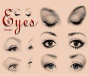 20款高分辨率女人眼睛笔刷