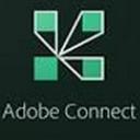 Adobe Connect许可证