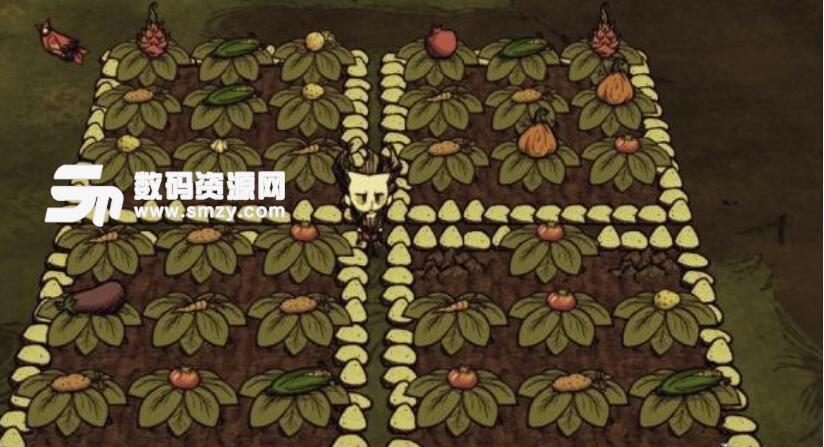 饥荒菜园种菜补丁