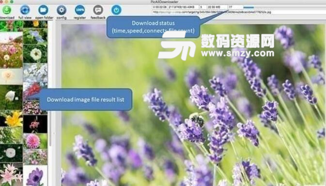 Web Image Downloader苹果电脑版