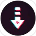 Tiktok視頻下載器app(tiktok資源下載) v1.0 安卓版