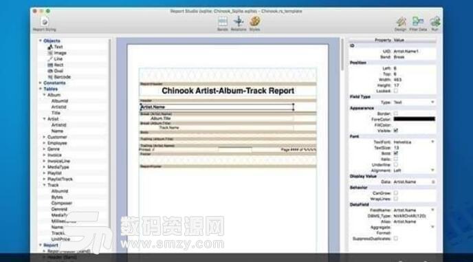 BKS Report Studio for mac