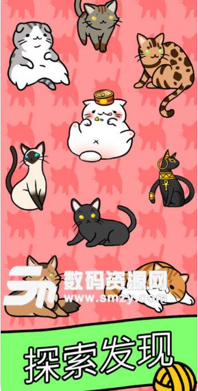 猫咪公寓苹果版下载