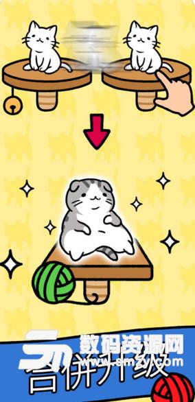 猫咪公寓苹果版