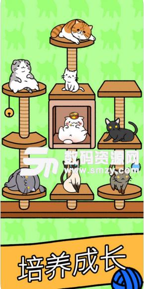 猫咪公寓苹果版最新