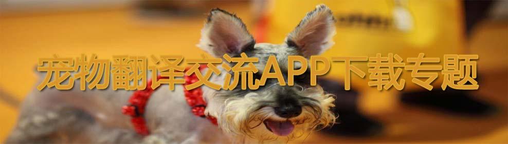 宠物翻译交流APP下载专题