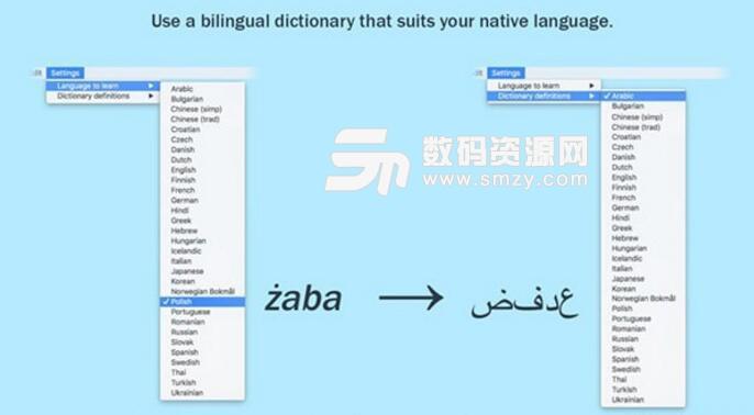 LinguaBrowse