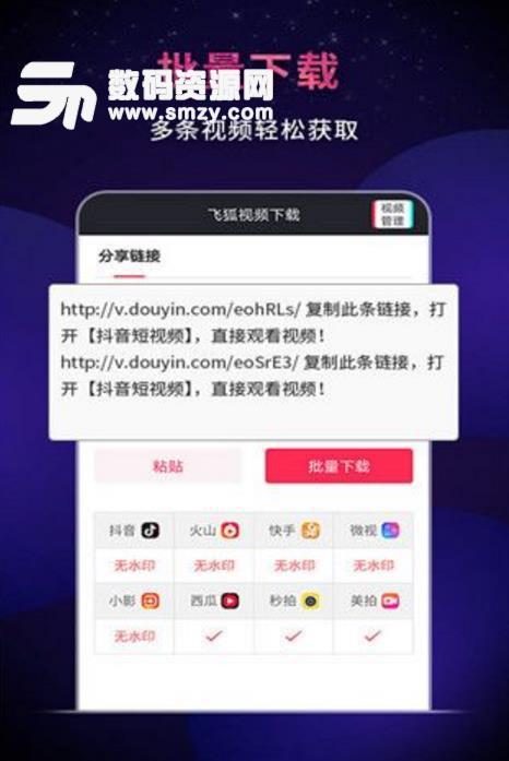 飞狐视频下载器官方版