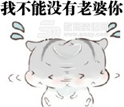 仓鼠老公道歉表情包(老婆你别走) 无水印版图片