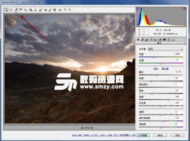 PS Raw格式图像调整插件2019汉化版下载