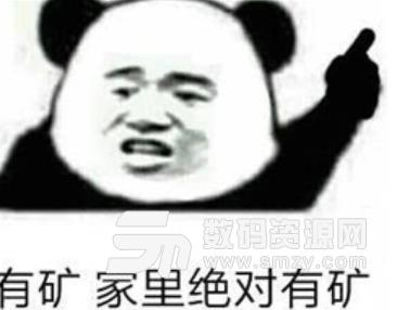 矿家子弟搞笑表情包高清版是文字和熊猫头组合而成的搞笑表情包供用户图片