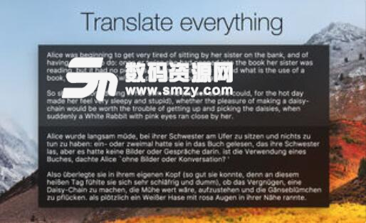 Fast Translator特色