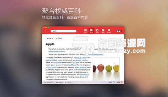 有道词典 for mac