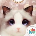 抖音猫眼壁纸动态app最新版