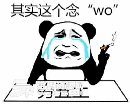 年度汉字qiou字图片(穷丑土喜欢念wo)无水应该你猪的表情表情大全图片