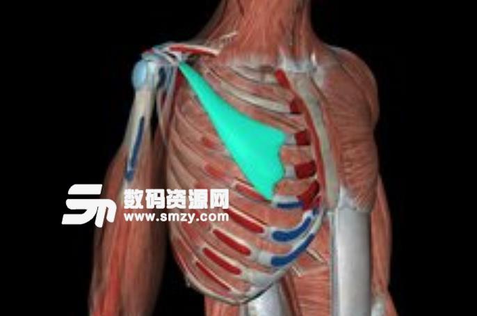 人体解剖学图集3D app