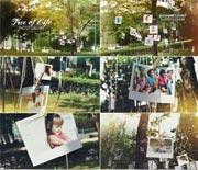 清新自然的树林实拍家庭视频AE模板
