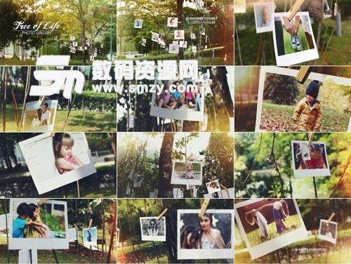 清新自然的树林实拍家庭视频AE模板下载
