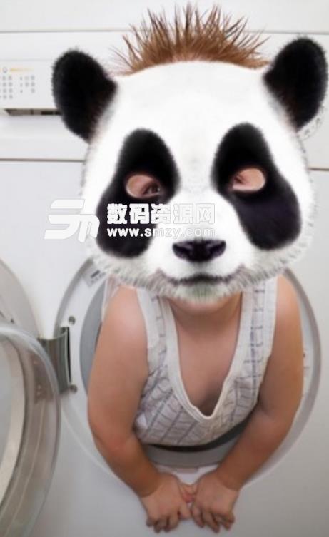 Panda Face安卓版
