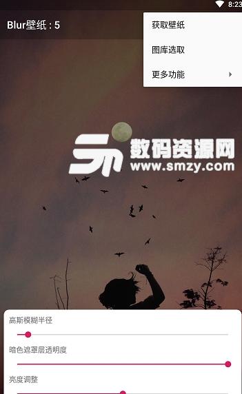 Blur壁纸app手机版