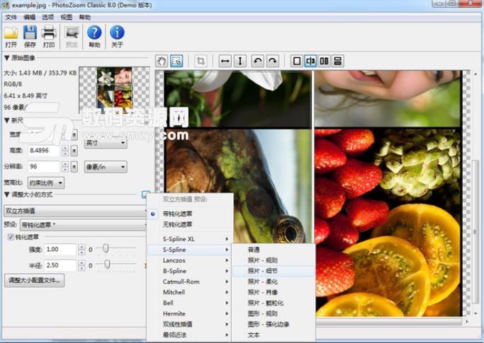 PhotoZoom Classic 8最新版下载