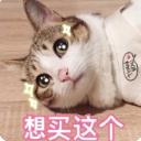 七夕撒嬌專用表情包