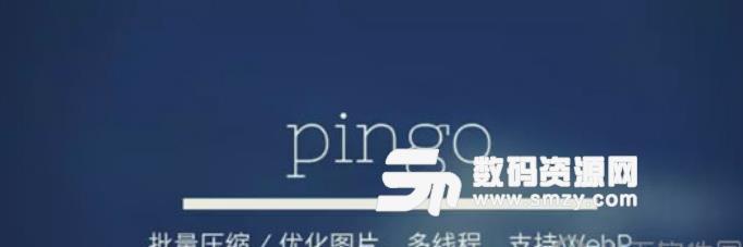 pingo绿色免费版下载