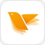 蜂鳥采編app