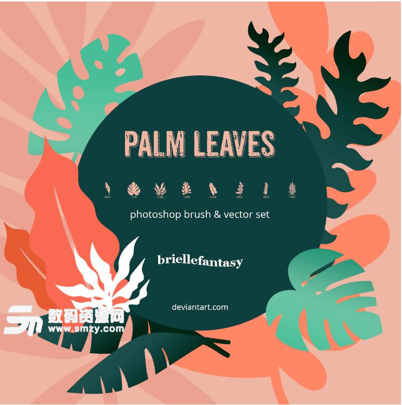 热带雨林树叶、叶片、叶子植物剪影图形PS笔刷下载