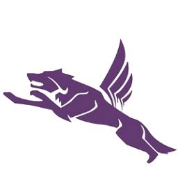飞狼基地网安卓app