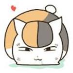 猫奴电影安卓版app