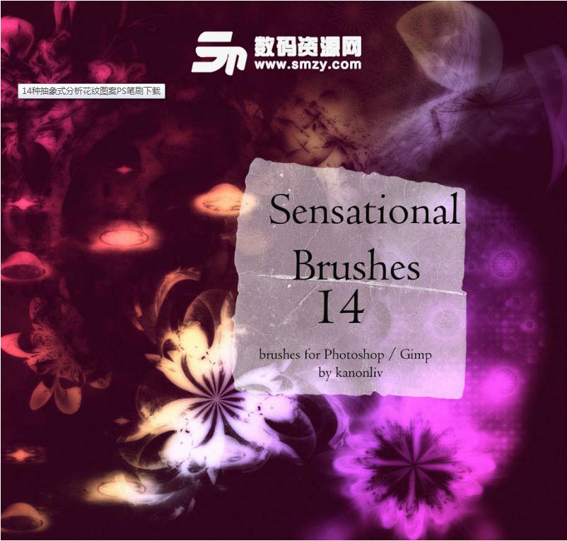 14種抽象式分析花紋圖案PS筆刷下載