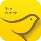 小鳥觀映手機app