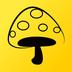 蘑菇丁手机app