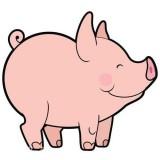 国民养猪安卓app下载