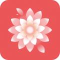 麗人志安卓app