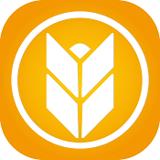 大麦理财手机app